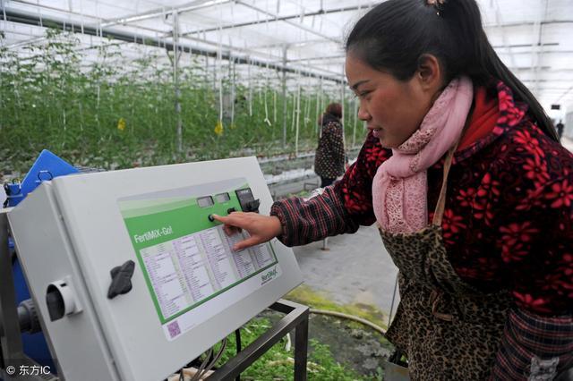 """""""智慧农业""""在物联网的浪潮下的发展"""