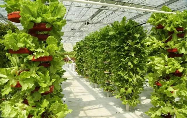 农业大数据发展规划(智慧农业方向)