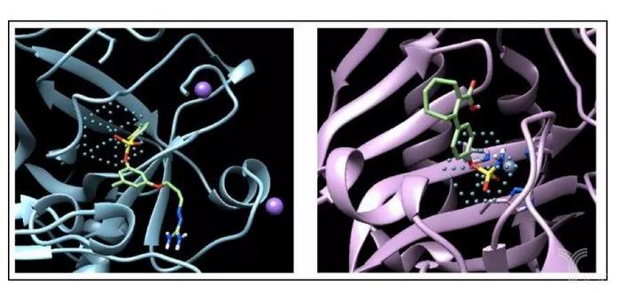 AtomNet通過訓練能夠識別抗生素中常見的化合物結構——磺酰基.jpg