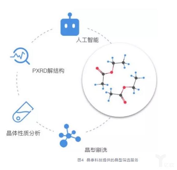 晶泰科技提供的晶型篩選服務.jpg