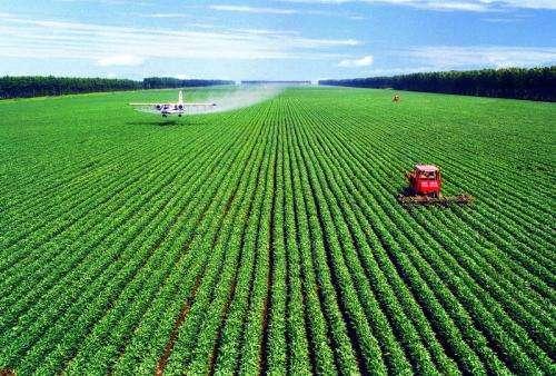 """物联网让农业拥有""""智慧"""""""