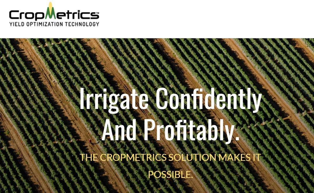 智慧農業 未來可期!物聯網在農業中的應用
