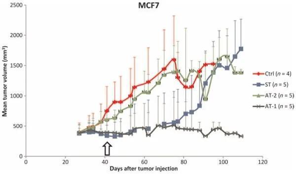 應用于MCF7臨床前模型的不同治療的MRI(核磁共振影像)體積數據.jpg