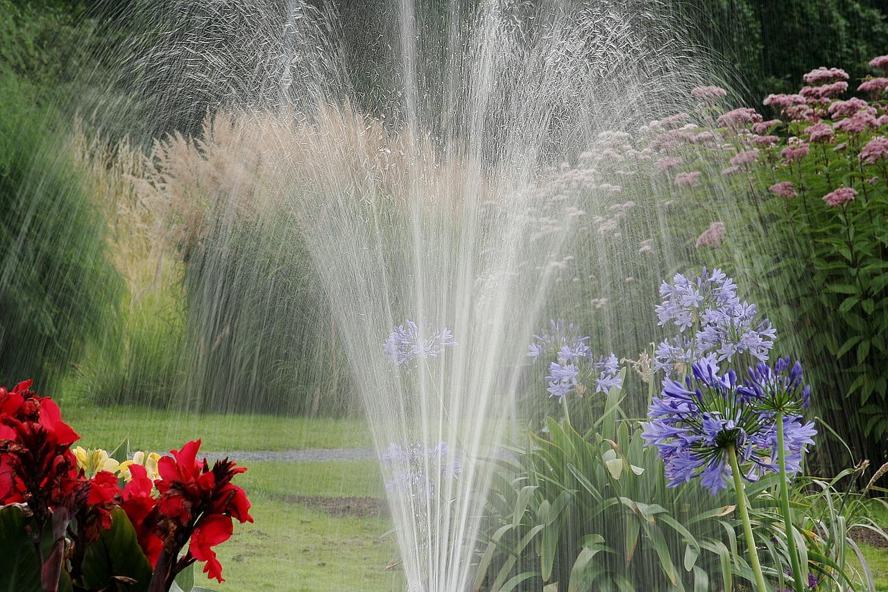 garden-2388292_1280.jpg