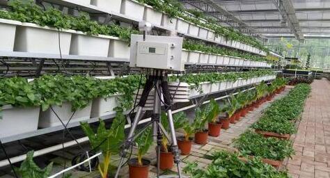 物联网技术在传统农业转型中面临哪些难题?
