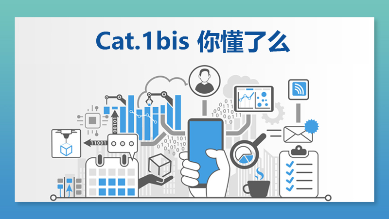 Cat.1bis 你懂了么