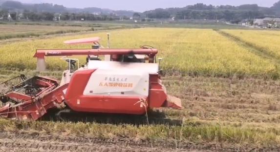 北斗与5G加持!我国无人驾驶农机完成水稻种收一条龙