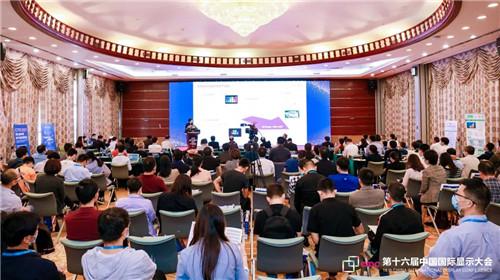 第十六届中国国际显示大会——量子点显示技术产业峰会成功举行