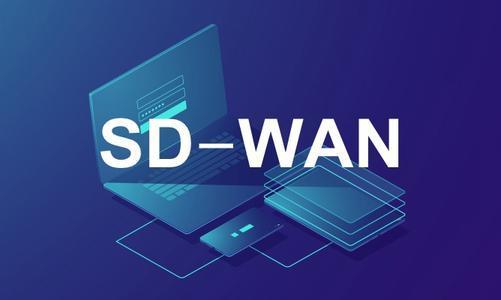 SD-WAN:爱我就别想太多