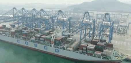 上海龍吳港務公司集卡管理