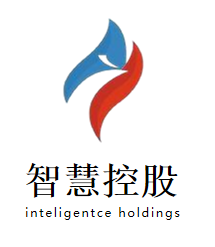 珠海智慧控股集团有限公司