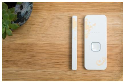 疫情刺激下的NB-IoT智能门磁市场
