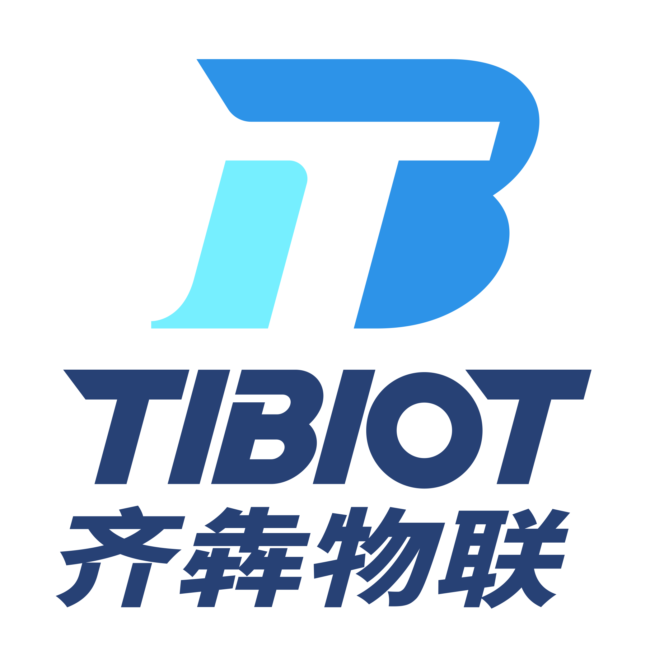 上海齐犇信息科技有限公司